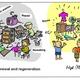 Renewal and regeneration