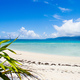 Okinawa Launches Study on Sustainable Tourism