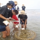 Okinawa Coral Reef Conservation and Utilization Effort Wins 2013 Environmental  Education Award