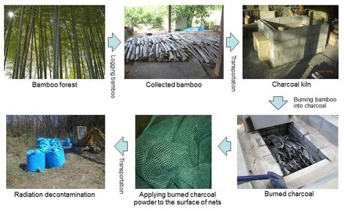 photo: Bamboo Charcoal