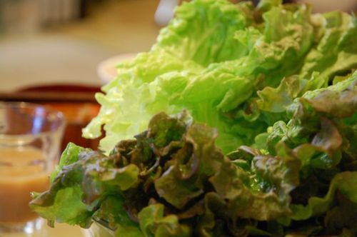 Photo: Fresh lettuce