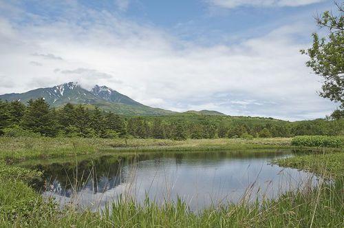 Photo: Minamihama Wetland in Rishirifuji, Hokkaido.