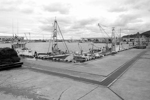 Photo: Harbor