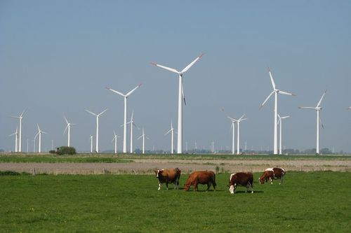 Photo: Wind Farm