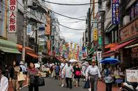 The Growing Senior Population in Japan's Metropolitan Areas: Challenges for Japan, Hints for the World