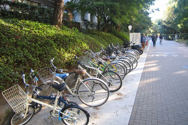 Kyoto Tackles Mission of Becoming World-Class Bike ...