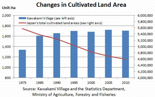 Figure: Changes in Cultivated Land Area