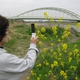 Fujitsu Provides Free Web-based Cloud Platform for Biodiversity Conservation Research Activities