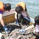 Girls' High School Wins 2013 Japan Stockholm Junior Water Prize