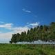 環境幸福度は北海道が最高点 「環境意識と地域環境」に関する調査結果