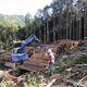 三重県林業研究所、森林管理システムe-forest開発へ