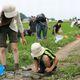 アレフ、「生きもの豊かな田んぼ」の取り組みで生物多様性保全に貢献