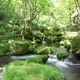 サントリー、水源環境の違いを反映した水利用影響の指標を開発