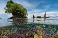 気象庁、全球の海洋酸性化の監視情報を世界に提供開始