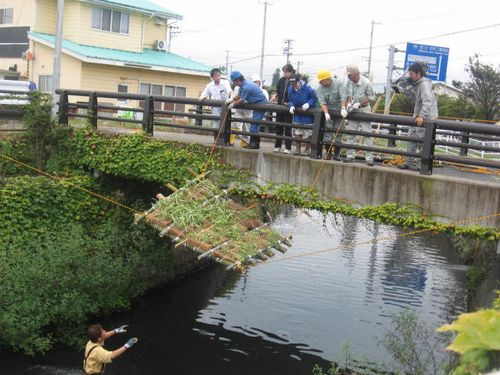 Japanese Experiment Launched To Purify Dirty River Water