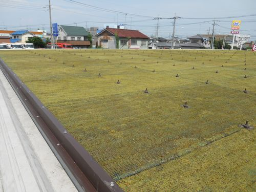 "JFS/Saitama Prefecture Introduces First ""Green Roof"" Convenience Store Project"