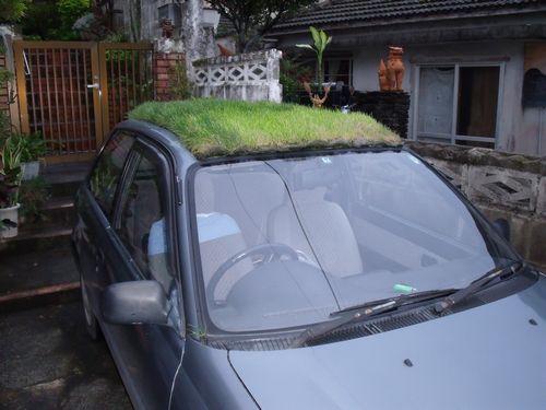 JFS/Lawn on Wheels