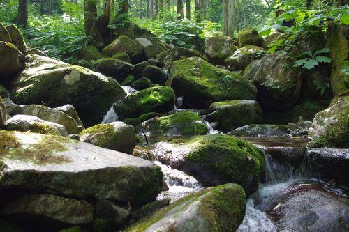 Mogami-river_springhead.jpg