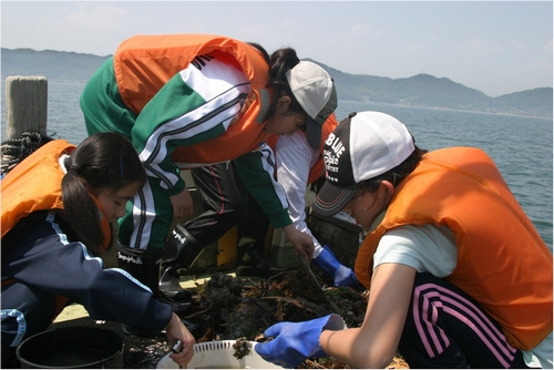 JFS/Japanese High School Students Work on Seabed Waste Issue