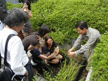 JFS/Architectural Design in Harmony with Nature Contributes to Sustainable Development of Society: Takenaka Corporation