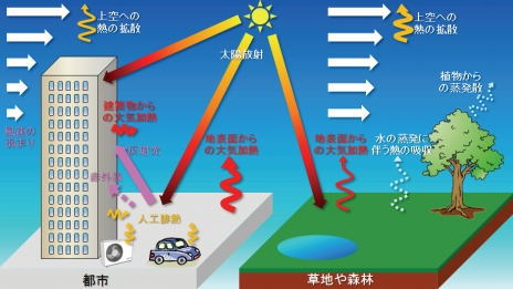 Sweltering Summer Heat In Japan S Kanto Region Exacerbated