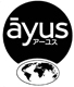 Ayus: Buddhist International Cooperation Network (*)