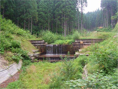 JFS/timber dam